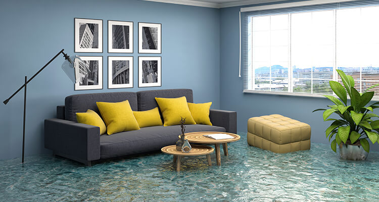 water-damage-and-restoration